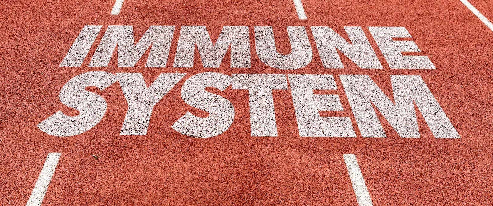 Order Immune Support Today and Stay On Track!